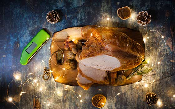 Turkey Thermometer - Thermapen Classic