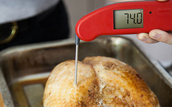 Turkey Thermometer Thermapen Professional